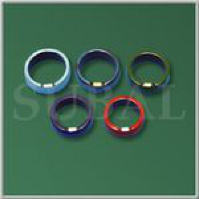 Decorate magnet ring